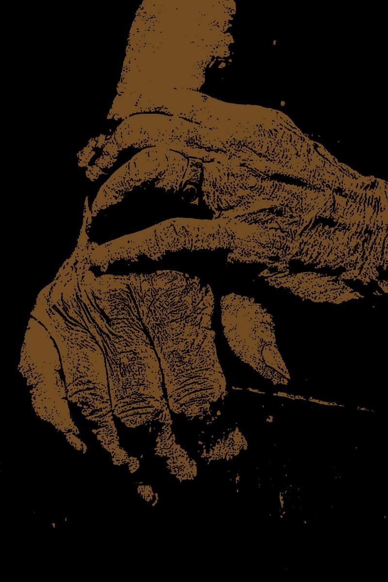 Hands 146 100  x 150 72dpi